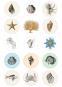Tier- und Pflanzendarstellungen. Sticker und Etiketten. Bild 4