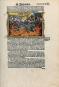 Zerbster Prunkbibel »Cranachbibel« Bild 4
