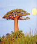 Bäume der Welt. Bild 5