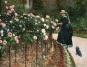 Claude Monet. Seerosen. Bild 5