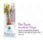 Der Kleine Prinz Buch und Affenbrotbaum Baobab im Set. Bild 5