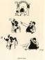 Erich Ohser. e.o.plauen. 3 Bände im Set. Bild 5