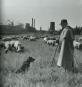 Koks und Cola. Das Ruhrgebiet der 1950er Jahre. Bild 5