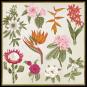 Pflanzen. Meisterwerke der botanischen Illustration. Wandkalender 2021. Bild 5