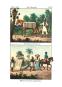 Vollständige Völkergallerie in getreuen Abbildungen aller Nationen mit ausführlicher Beschreibung derselben. Bild 5