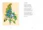 Wurzelwerk. Die Palette des wilden Gartens. Mit Original-Holzschnitt. Signiert und nummeriert. Bild 5