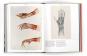 Ars Anatomica. Die kunstvolle Darstellung des menschlichen Körpers. Bild 6