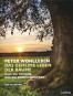 Das geheime Leben der Bäume. Was sie fühlen, wie sie kommunizieren. Der Bildband. Mit dem vollständigen Text der Originalausgabe. Bild 6