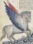 Das Lobgedicht auf König Robert von Anjou. Bild 6