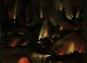Hieronymus Bosch. Das vollständige Werk. Originalausgabe. Bild 6