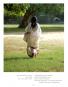 Sari. Das schönste Kleid der Welt. Bild 6
