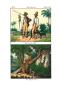 Vollständige Völkergallerie in getreuen Abbildungen aller Nationen mit ausführlicher Beschreibung derselben. Bild 6