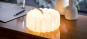 Akkordeon-Lampe. Bild 7