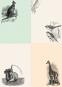 Tier- und Pflanzendarstellungen. Sticker und Etiketten. Bild 7
