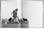 Walter Chandoha. Cats. Bild 7